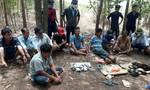 Đột kích trường gà trong rừng tràm ở Đồng Nai