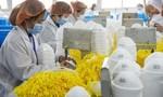 Xuất khẩu Trung Quốc giảm mạnh do dịch nCoV