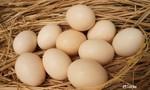 Người dân không nghe theo tin đồn ăn trứng gà phòng COVID-19