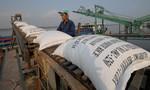 Kiến nghị xử lý trách nhiệm trong tham mưu xuất khẩu gạo