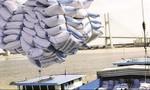 Lập đoàn thanh tra hoạt động xuất khẩu gạo