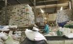 """ĐBSCL: Nhiều địa phương kiến nghị """"giải cứu"""" gạo"""