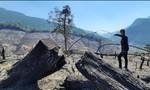 Khẩn trương điều tra vụ cháy rừng ở xã Mà Cooih