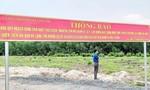 Kê biên hàng trăm thửa đất Công ty Alibaba tại Đồng Nai