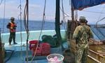 Nổ súng trấn áp bắt tàu giã cào đâm tàu biên phòng