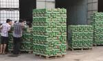 TPHCM: Bắt lượng lớn bia và sữa ngoại nhập lậu