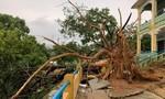 Lốc xoáy thổi bay mái nhiều ngôi nhà