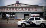 Dịch phức tạp, Bắc Kinh hủy gần 1.300 chuyến bay