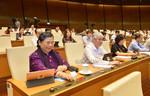 Tăng thẩm quyền cho HĐND TP. Đà Nẵng