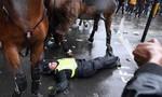 Clip nữ cảnh sát kỵ binh Anh ngã ngựa do người biểu tình tấn công