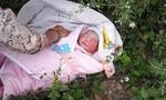 Bé gái sơ sinh bị bỏ rơi, kiến bu quanh người