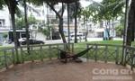 Tìm thân nhân người đàn ông chết trong công viên ở Sài Gòn