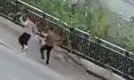 """Clip sụt đất kinh hoàng """"nuốt chửng"""" người đi bộ ở Trung Quốc"""