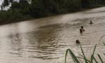 Thi lặn khi tắm hồ, 2 học sinh chết đuối