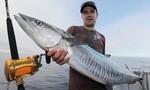 Người đàn ông tử vong vì con cá thu 18kg lao trúng ngực