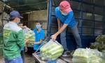 Bạn đọc Báo Công an TPHCM ủng hộ 1 tấn rau sạch tới Thảo cầm viên Sài Gòn