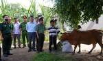 Tặng bò giống cho gia đình khó khăn