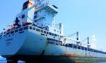 """Tàu """"khủng"""" cắm cờ quốc tịch Cyprus neo trái phép trong vùng nội thủy Việt Nam"""