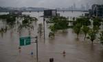 Mưa lớn ở Hàn Quốc khiến nhiều người chết và mất tích