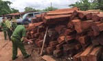 """Bắt giam đối tượng bán gỗ lậu """"khủng"""" cho Doanh nghiệp tư nhân Hùng Ny"""