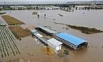 Trung Quốc: Xe buýt bị lũ lớn nhấn chìm, 13 người thiệt mạng