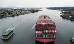 Thiếu trầm trọng tài xế xe tải khiến chuỗi cung ứng toàn cầu tắc nghẽn