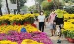 Hoa cây cảnh đổ về nhiều, giá rẻ, TPHCM khuyến khích người dân mua hỗ trợ nhà vườn