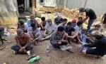 Đột kích trường gà lớn ở Đồng Nai, bắt giữ hơn 50 đối tượng