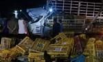Lật xe tải chở gà, 2 người chết, 1 người nguy kịch