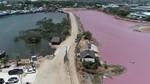Bà Rịa-Vũng Tàu: Nước tại khu vực chế biến hải sản bị ô nhiễm