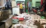Công an theo dõi, đột kích lò thu mua, giết mổ chó trộm cắp quy mô lớn ở Sài Gòn