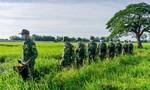 Biên giới Tây Nam: Quyết liệt xử lý xuất nhập cảnh trái phép