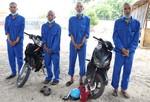 Nhóm đối tượng vận chuyển thuê xe máy trộm cắp từ TPHCM lên Tây Ninh