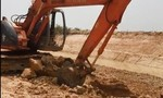 Nhiều vụ khai thác đất mặt, cát trái phép ở ĐBSCL