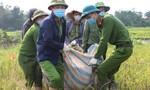 Người dân phải cách ly chống dịch, Công an xuống đồng gặt lúa giúp