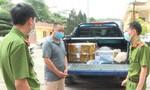 Bắt đối tượng vận chuyển, tàng trữ số lượng lớn rắn hổ mang Trung Quốc