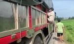 8 người trốn trong thùng xe tải để vượt chốt kiểm soát y tế