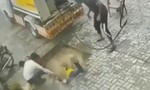 Clip 'hố tử thần' nuốt chửng 3 người đàn ông