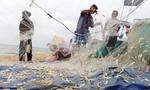 Bà Rịa - Vũng Tàu: Ngư dân mong được ra khơi