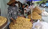 Chi hàng chục triệu USD nhập đậu phộng Trung Quốc