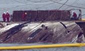 Tìm thấy mảnh thi thể trong con phà được trục vớt tại Hàn Quốc
