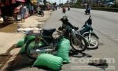 2 xe máy tông nhau trực diện, 2 người nguy kịch