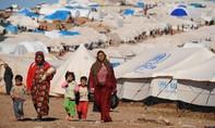 700.000 người di tản Trung Đông đã vào châu Âu trong năm 2015