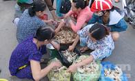 Nhộn nhịp chợ nấm khoang