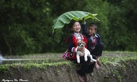 Việt Nam đẹp 'mê hồn' dưới góc nhìn nhiếp ảnh nghệ thuật
