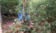 Điểm tin ANTT ngày 16-11: Nghi can giết mẹ con cô dâu đã tự tử