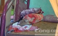 Vụ 3 mẹ con chết ở Long An: Nghi người mẹ giết hai con rồi tự tử