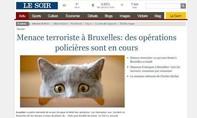 Bruxelles giữa làn đạn bố ráp