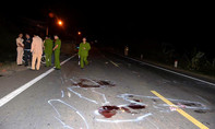 Tài xế gây tai nạn khiến 5 người chết, 8 người bị thương xài bằng giả