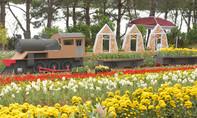 Festival hoa Đà Lạt 2015: Lễ hội hoa lớn nhất từ trước đến nay